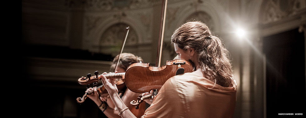 A violinist is shown from behind performing with her head resting on the instrument.