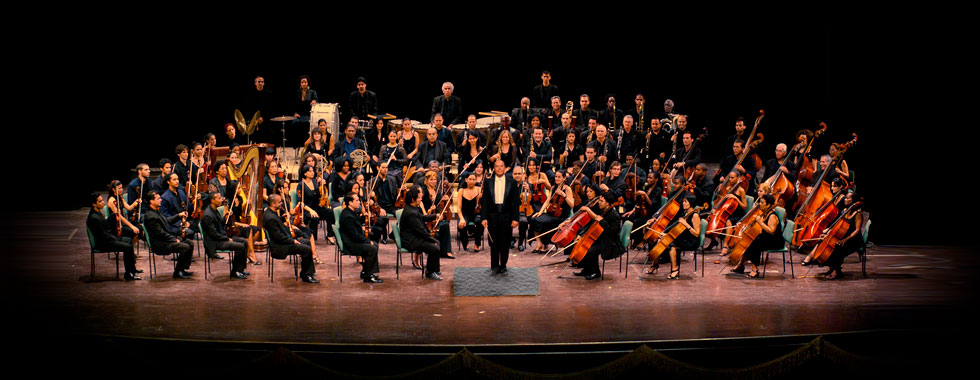 The orchestra musicians sit and stand at their stations poised and prepared to play their instruments while they look to the conductor, standing in the center.