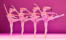 A group of dancers in flamingo costumes dance in a row.