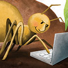 In an illustration, a spider uses a laptop computer.